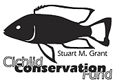 Donate to save Malawi cichlids!